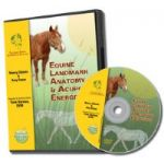 Equine Acupoint Energetics & Landmark Anatomy DVD TallGrass IAATH LFA #92533