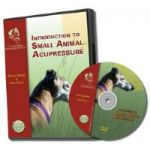 Introduction to Small Animal Acupressure DVD Video