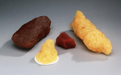 Fat and Muscle Replica Set of 4 includes 1 and 5 lb Fat and 1 and ...