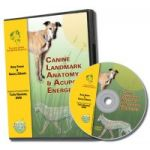 Canine Acupoint Energetics and Landmark Anatomy DVD- TallGrass Institute LFA #92534