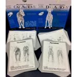Canine + Feline Anatomy Flashcards SPECIAL OFFER