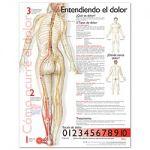 Pain Chart - Understanding Pain Spanish Language