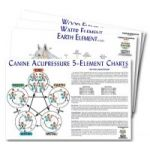 Canine Five Element Chart Set of 4 Charts  Dog