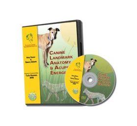 Canine Acupoint Energetics and Landmark Anatomy DVD- TallGrass Institute LFA #92534