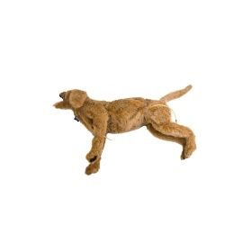 Canine Endoscopy Training Manikin MIKEY®
