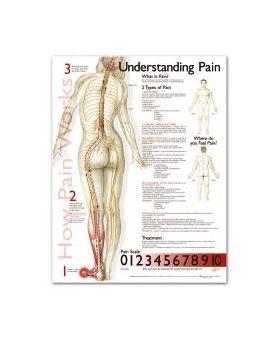 Pain Chart - Understanding Pain